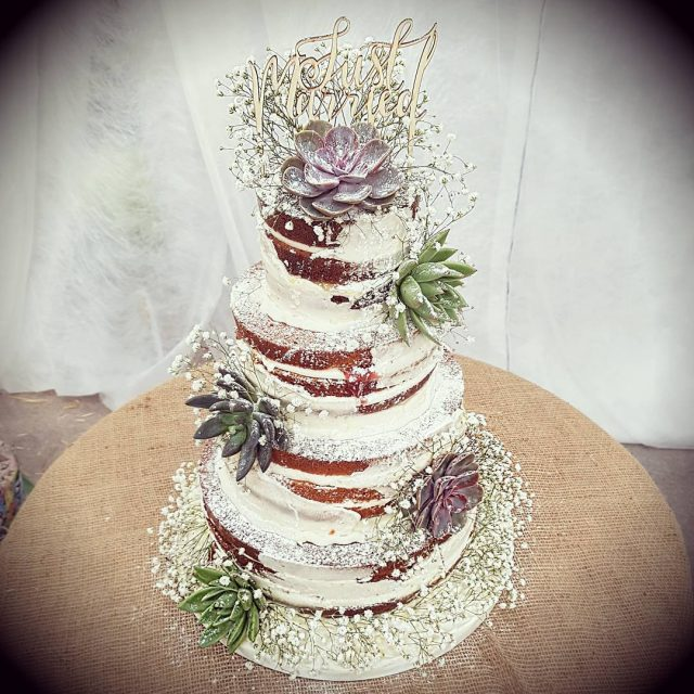 Succulent naked cake at the gorgeous Warren Farm last weekendhellip